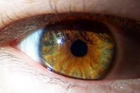 que color de ojos les gusta mas votación