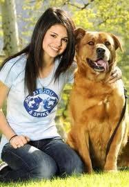 El perro de Sell Gomez ¡GIGANTEEE!