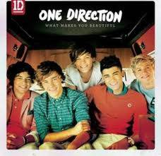 1D ( One Direction )