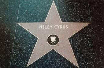la estrella de hollywood.