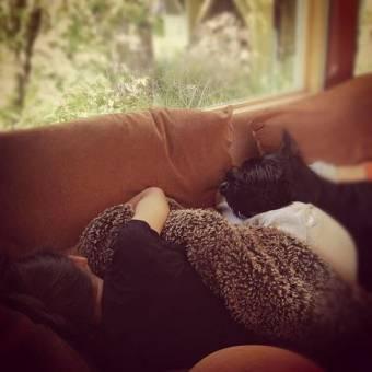 zendaya dormida con su bb osea su perrito