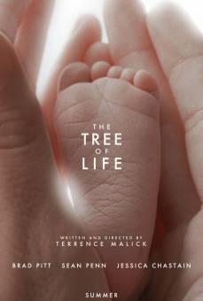 The Tree of Life (El árbol de la vida)