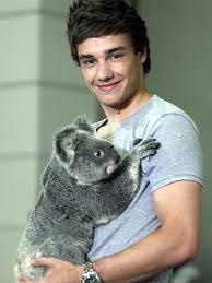 Liam cargando un koala